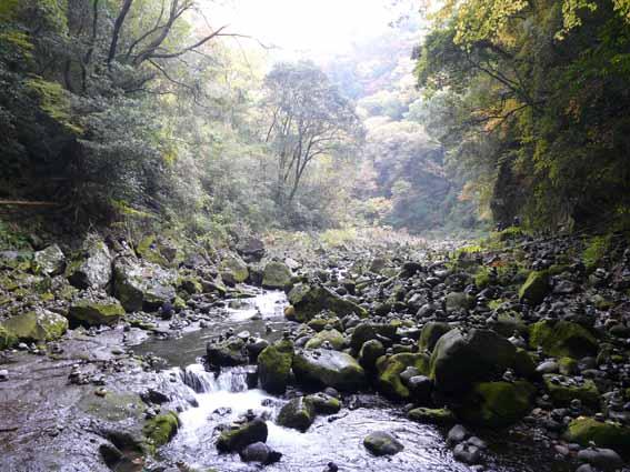 2010_glare_takachiho