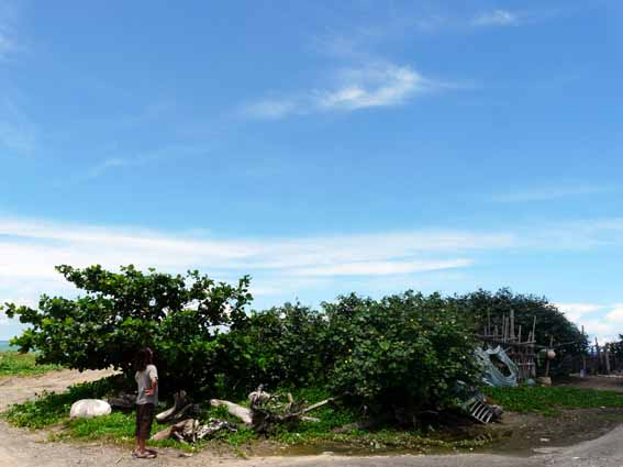 taiwan2011_2image