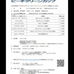 NSA公認AAランク 静波マリンピック ビーチクリーンカップ