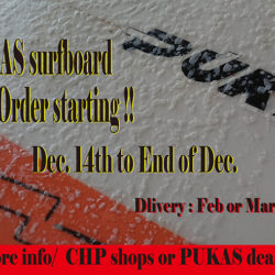 Pukas Order Accepting ~12/29