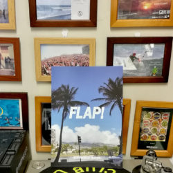 Flap Design 2019 Springカタログ