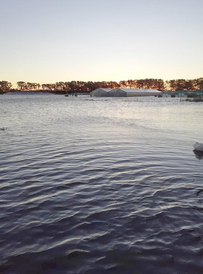 鹿島は150号からビーチまで水没しました...