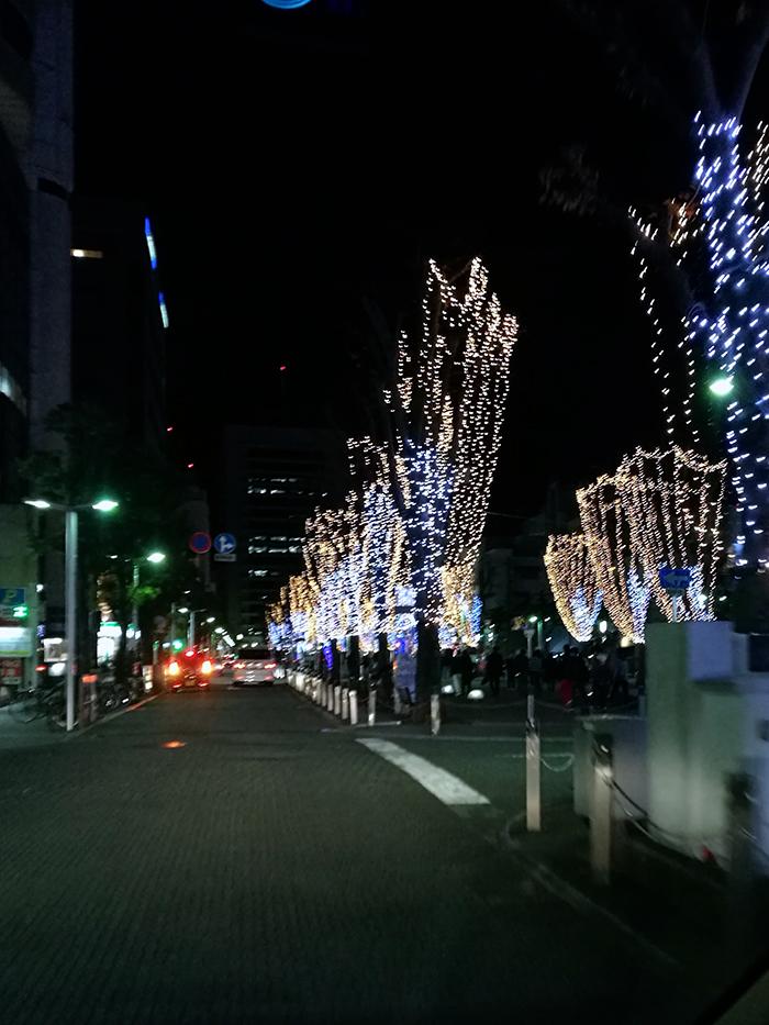 静岡のお街、青葉公園のイルミネーション